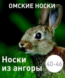 nos_angor_rabbit_1